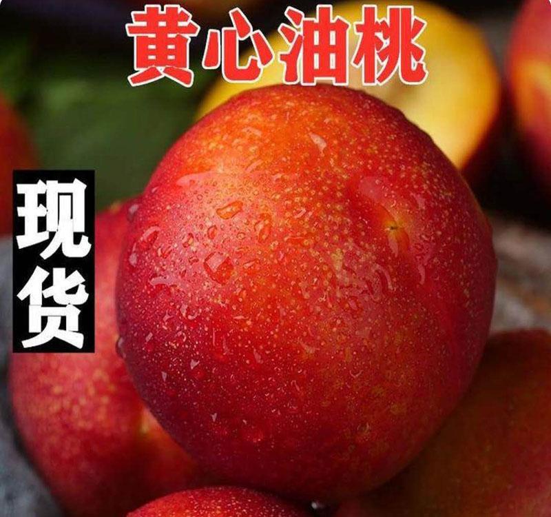 黄心油桃3.jpg