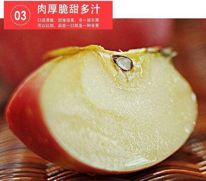 c红富士苹果5.jpg