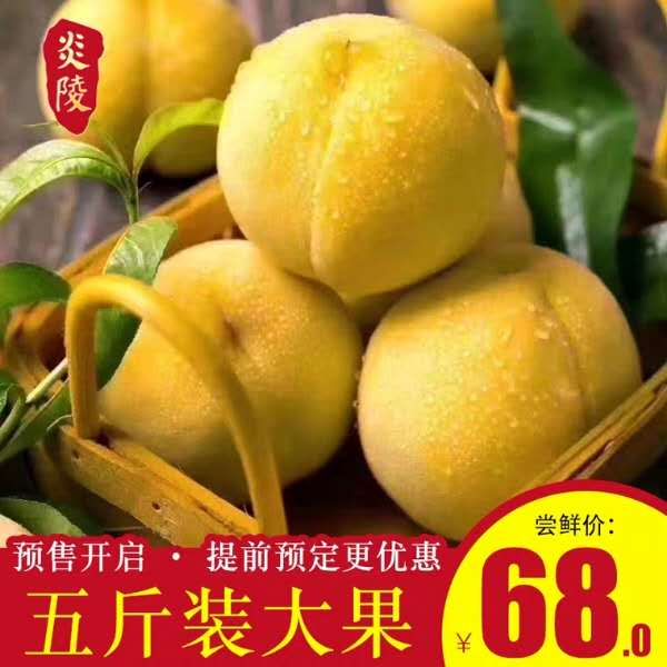 湖南 炎陵黄桃 5斤(12个)