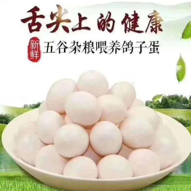 新鲜农家散养鸽子蛋30枚
