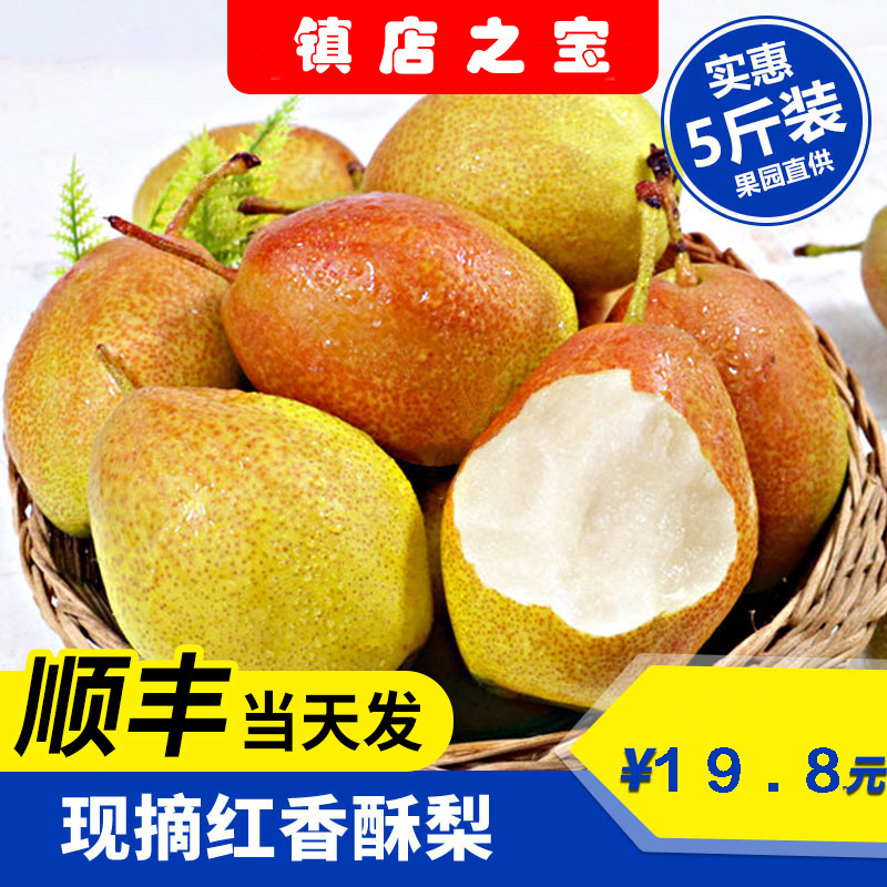 山西红香酥梨5斤