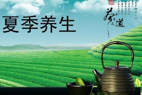 夏季养生茶饮
